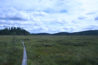 patvinsuo-national-park2
