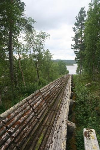 The log flume