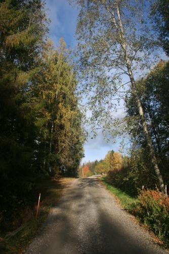 My school road