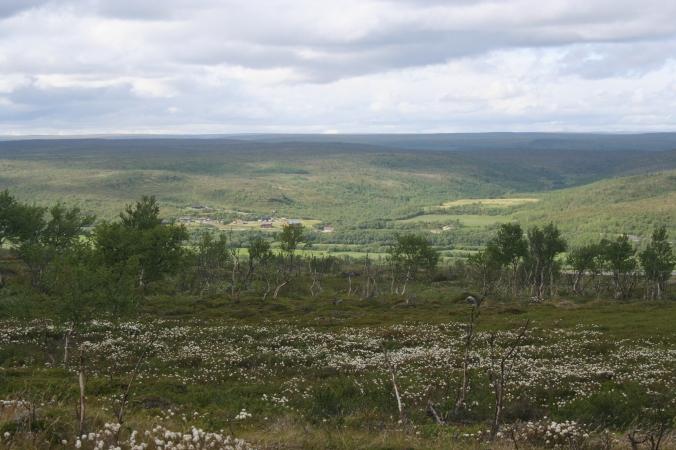 tuulijärvi13
