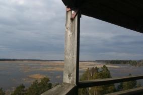 Puurijärvi bird watching tower