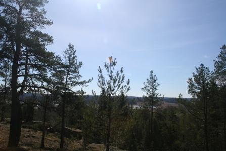 Kuusisto hill top